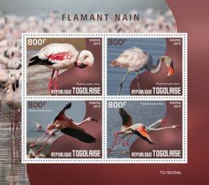 TOGO - 2019 - Lesser Flamingo - Perf 4v Sheet - MNH