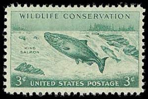 PCBstamps   US #1079 3c Wildlife, King Salmon, MNH, (PCB-16)