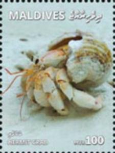 Maldives - 2019 Hermit Crab - Stamp - MLD1801local09a