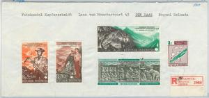 62925 - INDONESIA - POSTAL HISTORY - COVER to HOLLAND 1970 -  SCOUTS elephant
