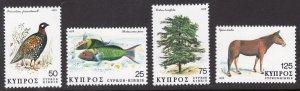 CYPRUS SCOTT 516-519