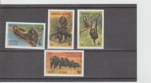 Sierra Leone  Scott#  586-589  MNH  (1983 Chimpanzees)
