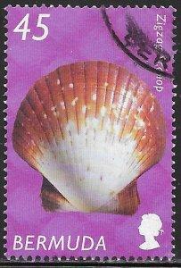 Bermuda 844 Used - Shells - Zigzag Scallop (Euvola ziczac)
