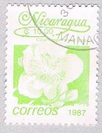 Nicaragua Flower green 10 - pickastamp (AP108719)