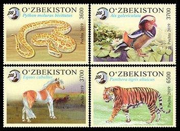 2019    Uzbekistan     1350-53    Tashkent Zoo