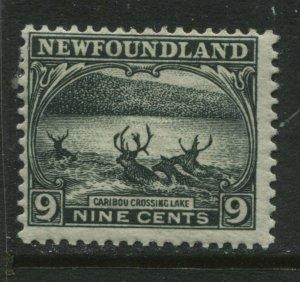 Newfoundland 1923  9 cents mint o.g. hinged