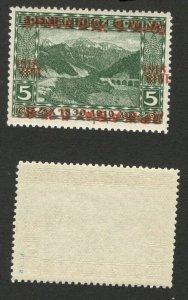 BOSNIA - SHS - MNH STAMP, 5h - ERROR -TETE BECHE OVERPRINT - CERTIFICATE - 1918.