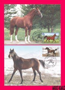 KYRGYZSTAN 2017 Joint Belarus Nature Fauna Farm Animals Horses 2 Maxicards Cards