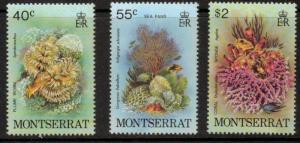MONTSERRAT SG453/5 1979 MARINE LIFE MNH