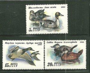 Russia MNH 6009-11 Ducks Birds