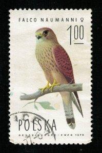 Bird 1974, 1.00Zl (TS-683)