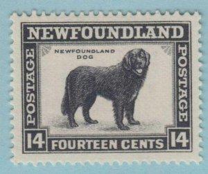 NEWFOUNDLAND 194  MINT HINGED OG *  NO FAULTS VERY  FINE !
