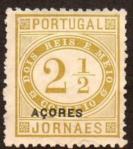 Azores  Scott  P4  Used