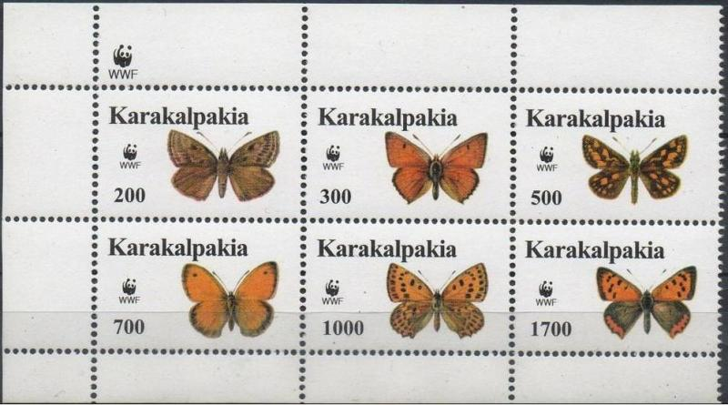KARAKALPAKIA SHEET BUTTERFLIES INSECTS