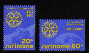 Surinam 1980 MNH Rotary International complete
