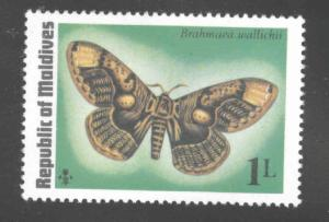 Maldive Islands Scott 584 MNH** 1975 Butterfly stamp