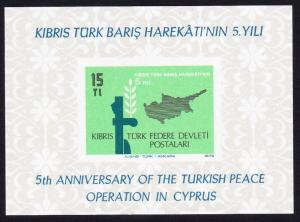 Turkish Cyprus 5th Anniversary of Turkish Peace Operation in Cyprus MS 1979