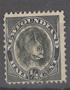 COLLECTION LOT # 2465 NEWFOUNDLAND #58 1894 UNUSED NO GUM CV=$15