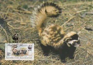 Kazakhstan 1997 Maxicard Sc #173 32te Marbled polecat WWF