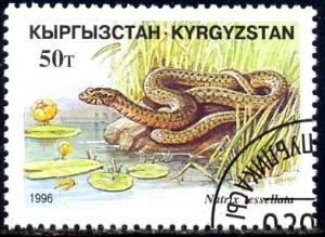 Snake, Natrix Tesseliata, Kyrgyzstan stamp SC#100 Used