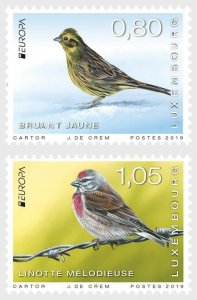 2019 LUXEMBOURG -  RARE BIRDS  - EUROPA - UNMOUNTED MINT SET