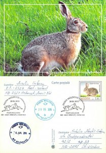Moldova 2016 PSC birds of prey stamps with FD Cancel rabbit hare hunting game