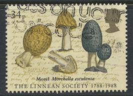 Great Britain SG 1383 -  Used - Linnean Society