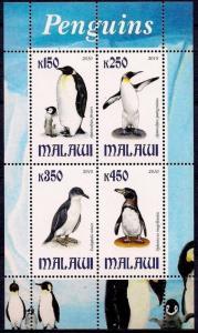 Malawi 2010 M/S Bird Penguins Animal Fauna Wildlife Antarctic Nature Stamps MNH