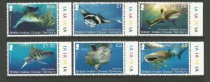 British Indian Ocean Territory (BIOT) 2017 Sharks Set MNH unmounted mint