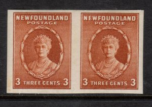 Newfoundland #187d Very Fine Never Hinged Imperf Pair