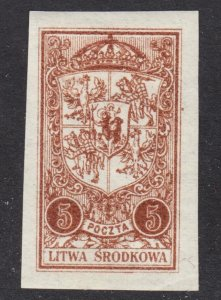 Central Lithuania Scott 39 imperforated F+ mint OG HH on pelure paper.
