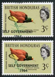 British Honduras SG218 3c with Self Government 1964 Overprint MISPLACED U/M