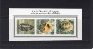 Comoro Islands 1992 Mi#985/987 SEA SHELLS Compound S/S Imperforated MNH