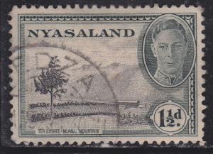Nyasaland Protectorate 70 Tea Plantation 1945