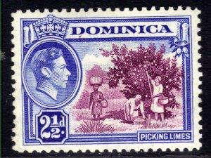 Dominica 1938 - 47 KGV1 2 1/2d Picking Limes MM SG 103 ( B180 )