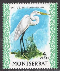MONTSERRAT SCOTT 234