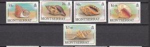 J26565 jlstamps 1988 Br colony montserrat mnh sea shell stamps part of set
