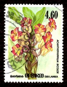 Sri Lanka 1984 Orchid Flowers, Acanthephippium bicolor 4.60r Sc.723 Used (#3)