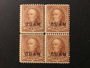 ICOLLECTZONE  US Guam 8 block Fine disturbed tropical gum. CV $250