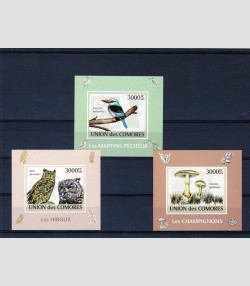 COMORO ISLANDS 2009 Birds & Mushrooms 3 Deluxe s/s Imperforated mnh.vf