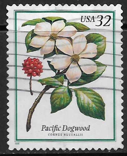 USA, 3197 USED, PACIFIC DOGWOOD FLOWERS