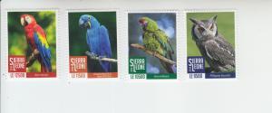 2018 Sierra Leone Birds Pt I Parrots & Owls (4) (Scott NA) MNH