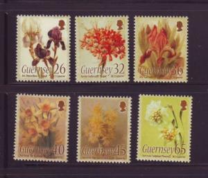 Guernsey Sc 860-5 2005 Flowers Caparne stamp set mint NH