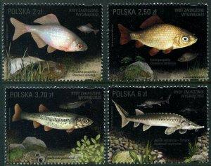 HERRICKSTAMP NEW ISSUES POLAND Sc.# 4245-48 Threatened Fish