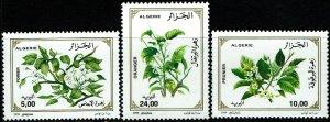 Algeria #1144-46  MNH - Flowering Trees (1999)