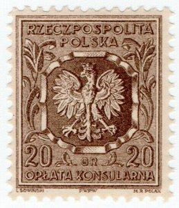 (I.B) Poland Revenue : Consular Service 20gr