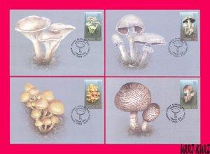 KYRGYZSTAN 2019 Nature Flora Poisonous Mushrooms Fungi 4 Maxicards Maximum Cards