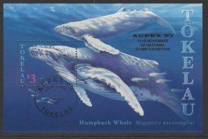 TOKELAU ISLANDS SGMS273 1997 APEX 97 FINE USED