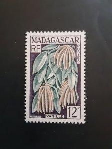 'Madagascar #299               MH