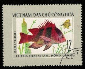Fish 12xu (T-5697)